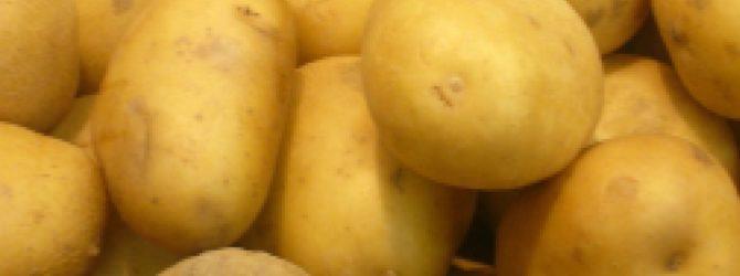 картофель лимонка