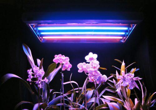 Светодиодный светильник в теплице