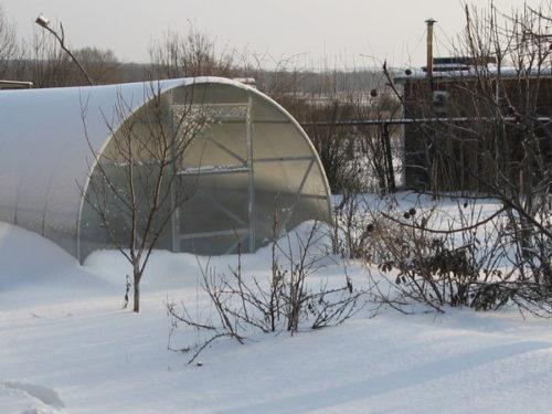 Теплица зимой