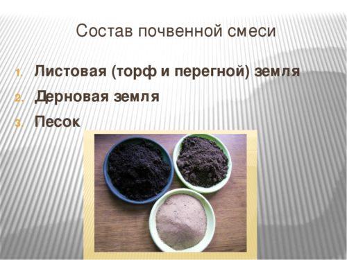 Ингредиенты для земляной смеси