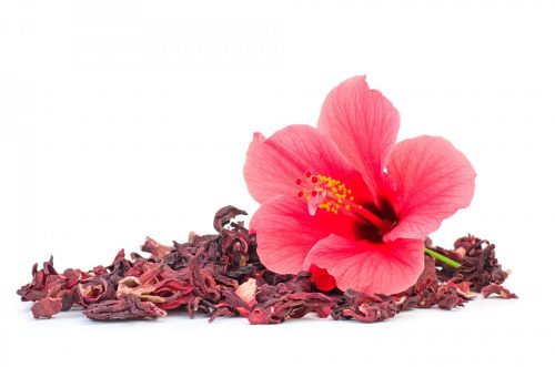 Высушенные чашелистики и цветок гибискуса