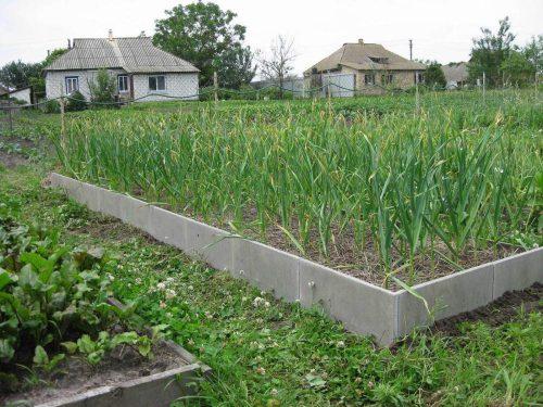Пример бетонного ограждения для грядок