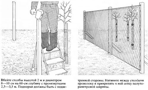 Защита от ветра