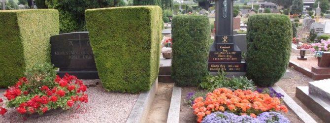 На немецких кладбищах кустарникам на могилах придают геометрическую форму