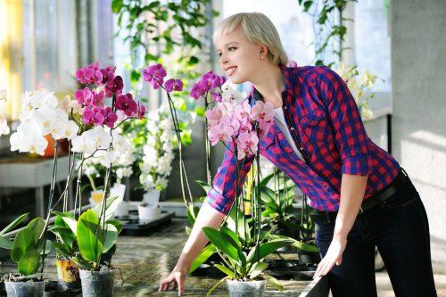 Орхидеи и женщина