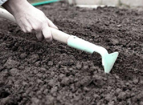 Формирование борозды для посева