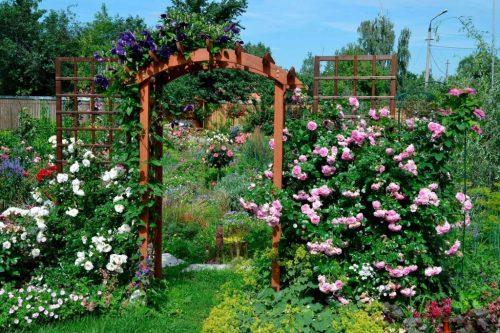 Садовая арка в цветнике