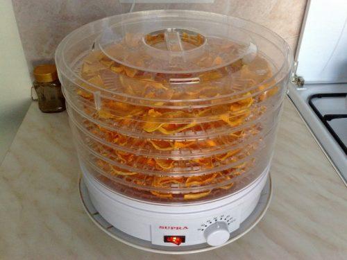 абрикосы в электросушилке