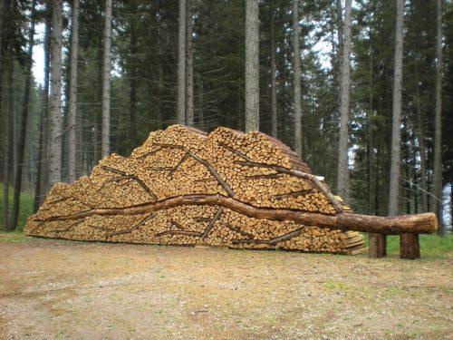 Необычная поленница в форме упавшего дерева