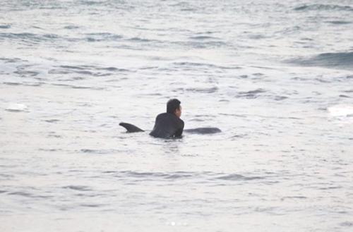 спасение кита на Бали