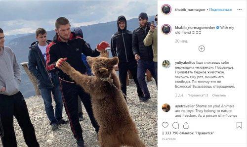 Нурмагомедов и медведь