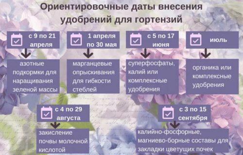 Ориентировочные даты внесения удобрений