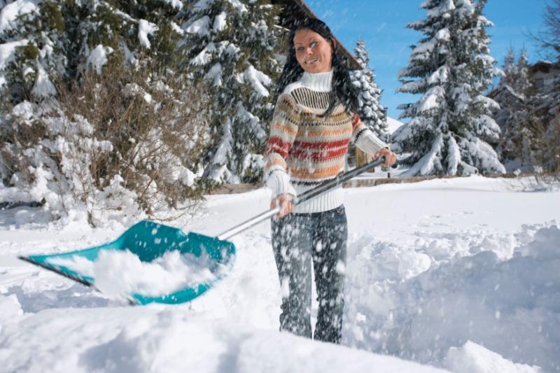 Что нужно сделать на даче зимой